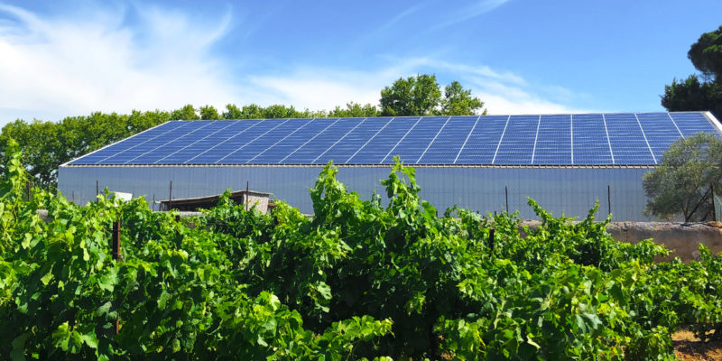 Bâtiment agricole photovoltaïque Apex Energies / Fabrègues (34)