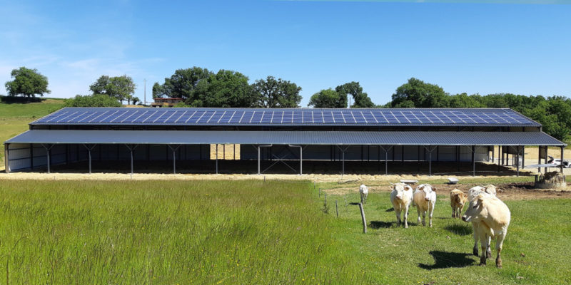 Versant Sud Bâtiment photovoltaïque agricole Irisolaris / Mirande (32)