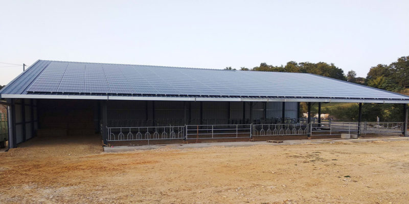 Versant Sud Bâtiment agricole A Dubecq et Fils / Fargues (40)
