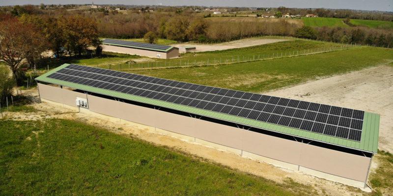Versant Sud Bâtiment photovoltaïque agricole Soltea / Maylis (40)